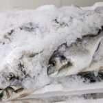 Ψάρια Fish from Greece σε πάγο