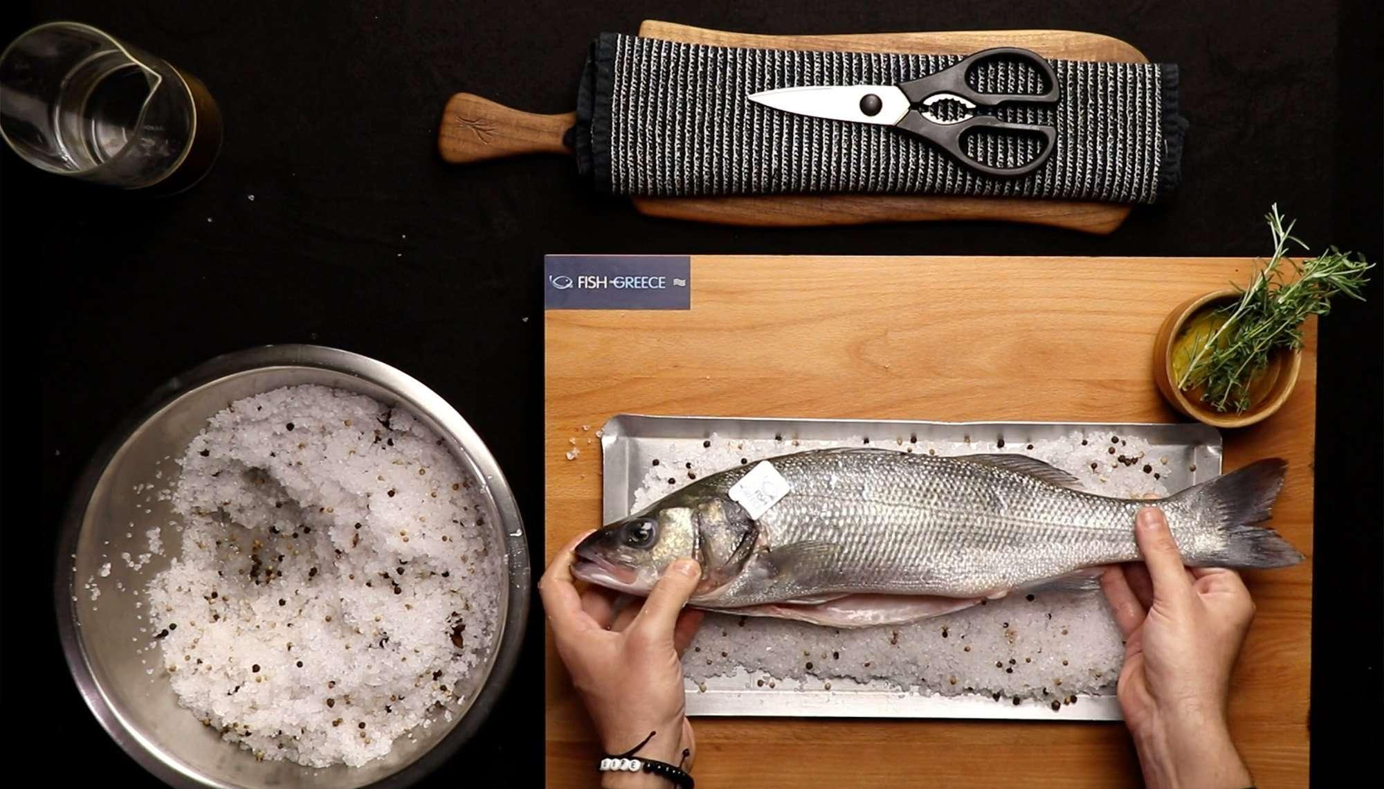 Fish from Greece τσιπούρα